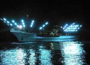 玉晶光积极开拓集鱼灯市场锁紧螺钉